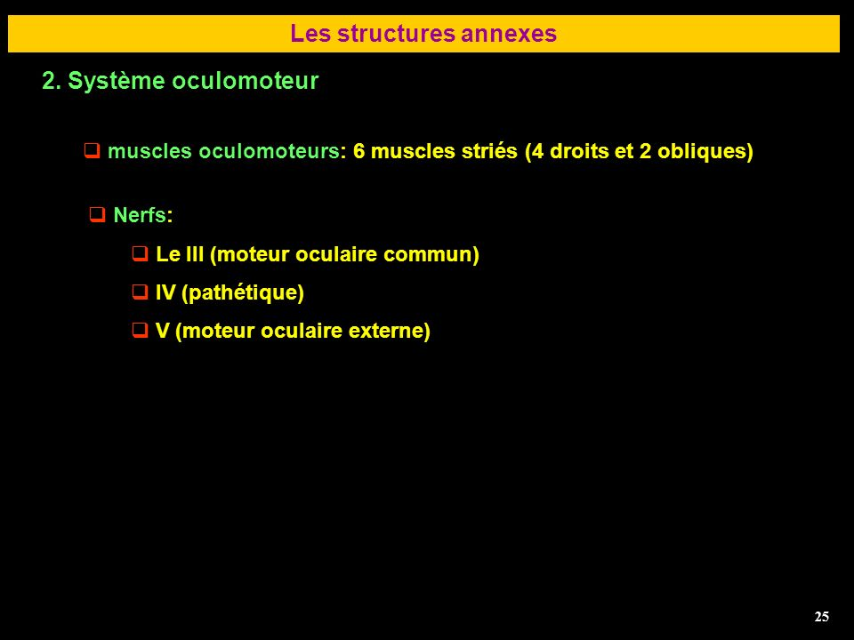 Les structures annexes