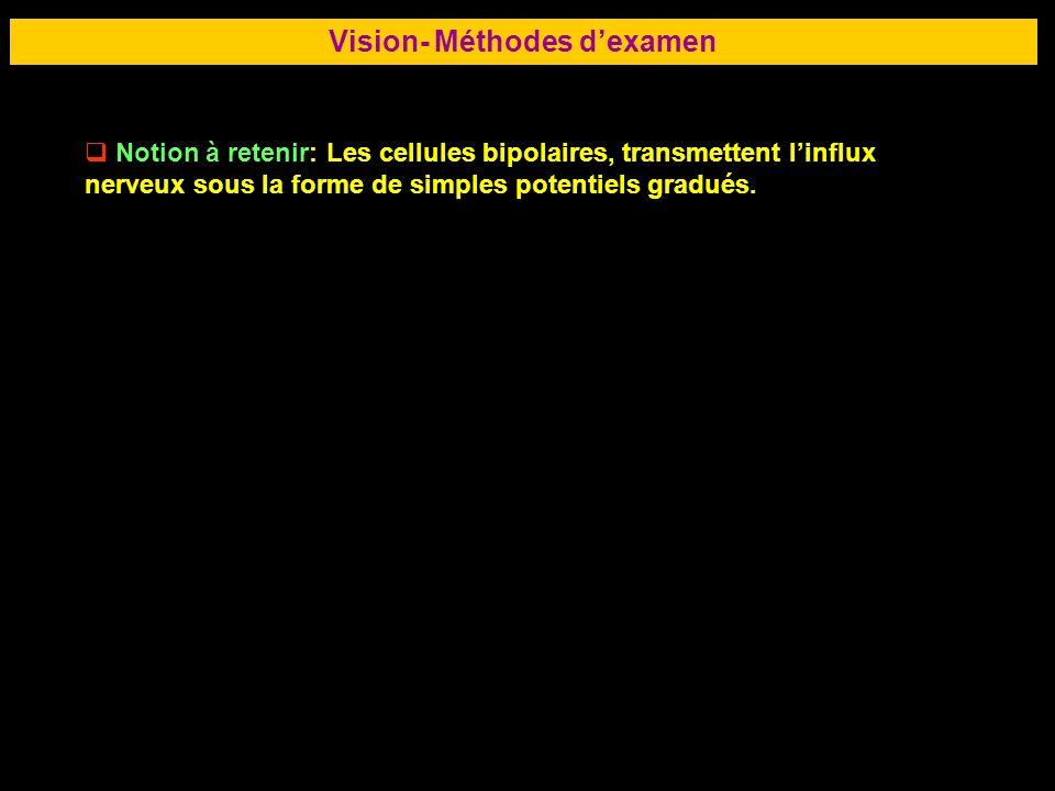 Vision- Méthodes d'examen