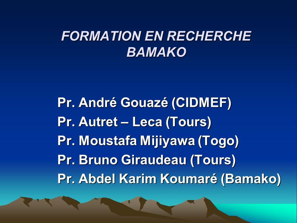 FORMATION EN RECHERCHE BAMAKO