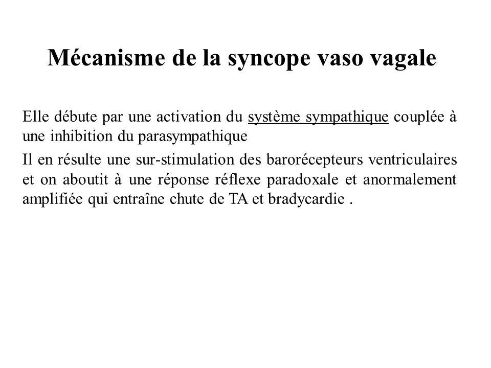 Mécanisme de la syncope vaso vagale