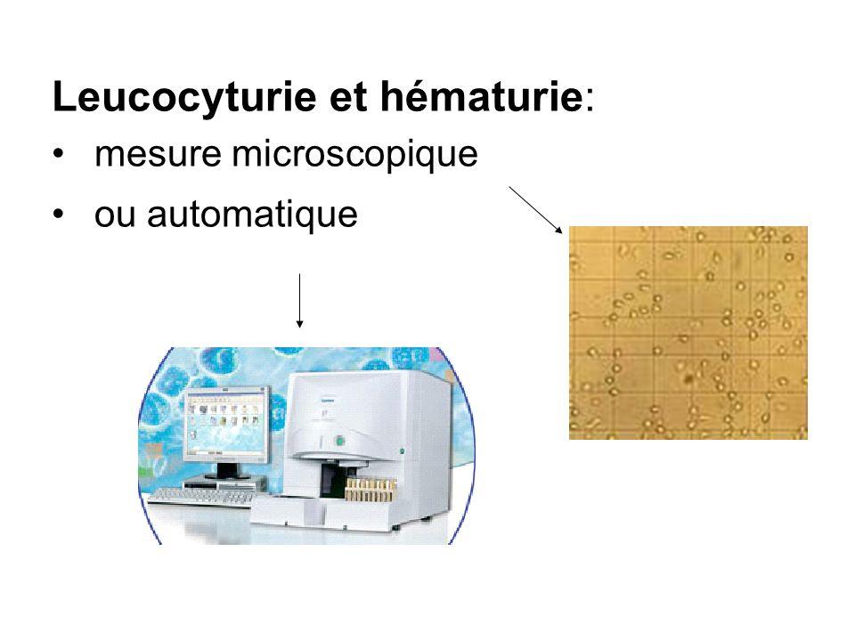 Leucocyturie et hématurie:
