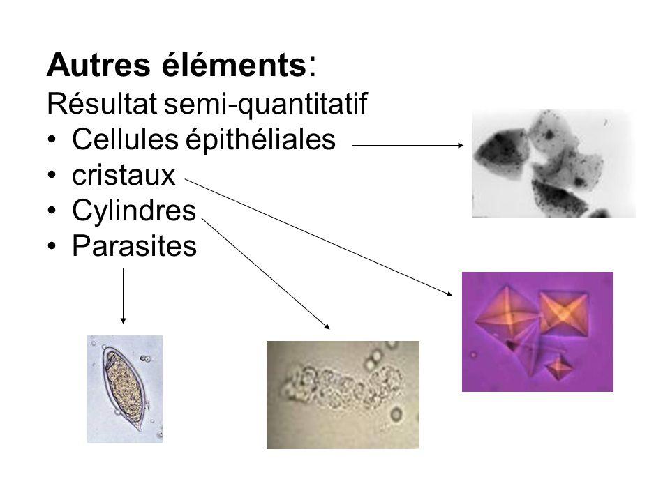Autres éléments: Résultat semi-quantitatif Cellules épithéliales
