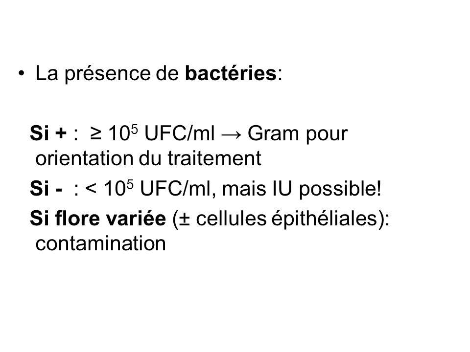 La présence de bactéries: