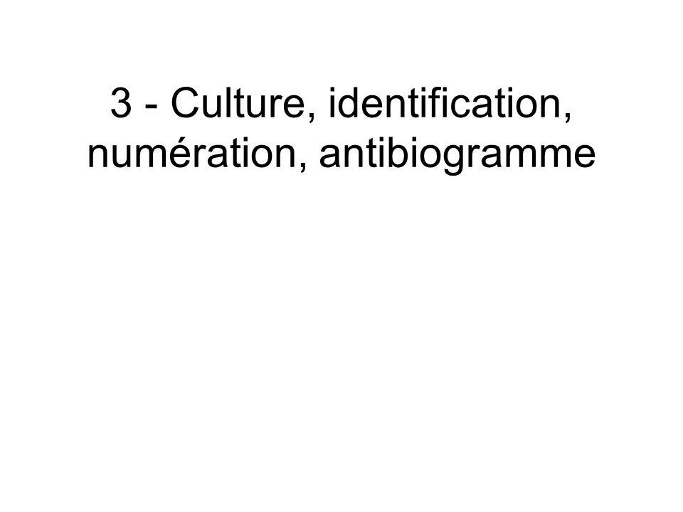 3 - Culture, identification, numération, antibiogramme