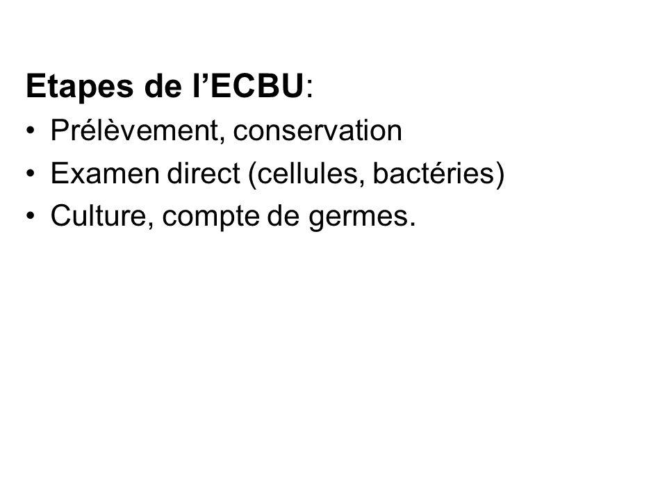 Etapes de l'ECBU: Prélèvement, conservation