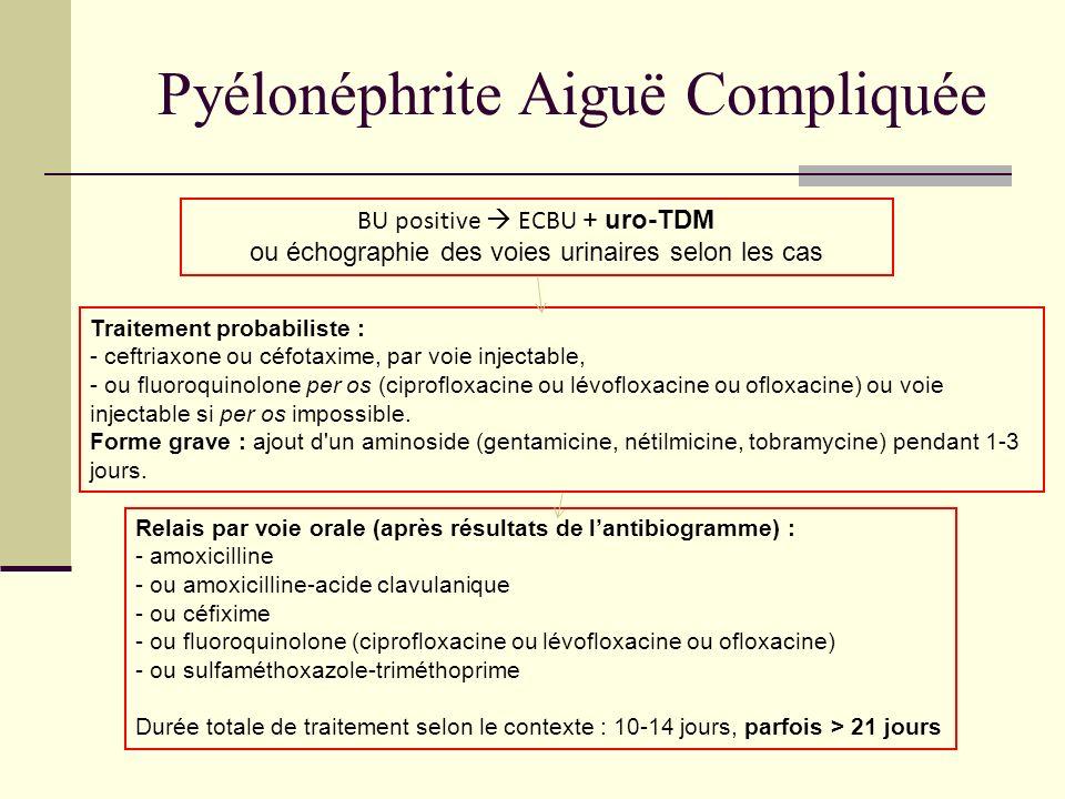 Pyélonéphrite Aiguë Compliquée