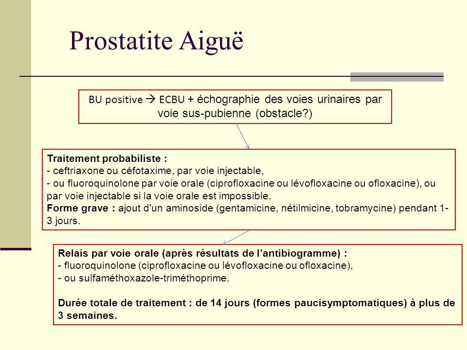 Prostatite Aiguë BU positive  ECBU + échographie des voies urinaires par voie sus-pubienne (obstacle )