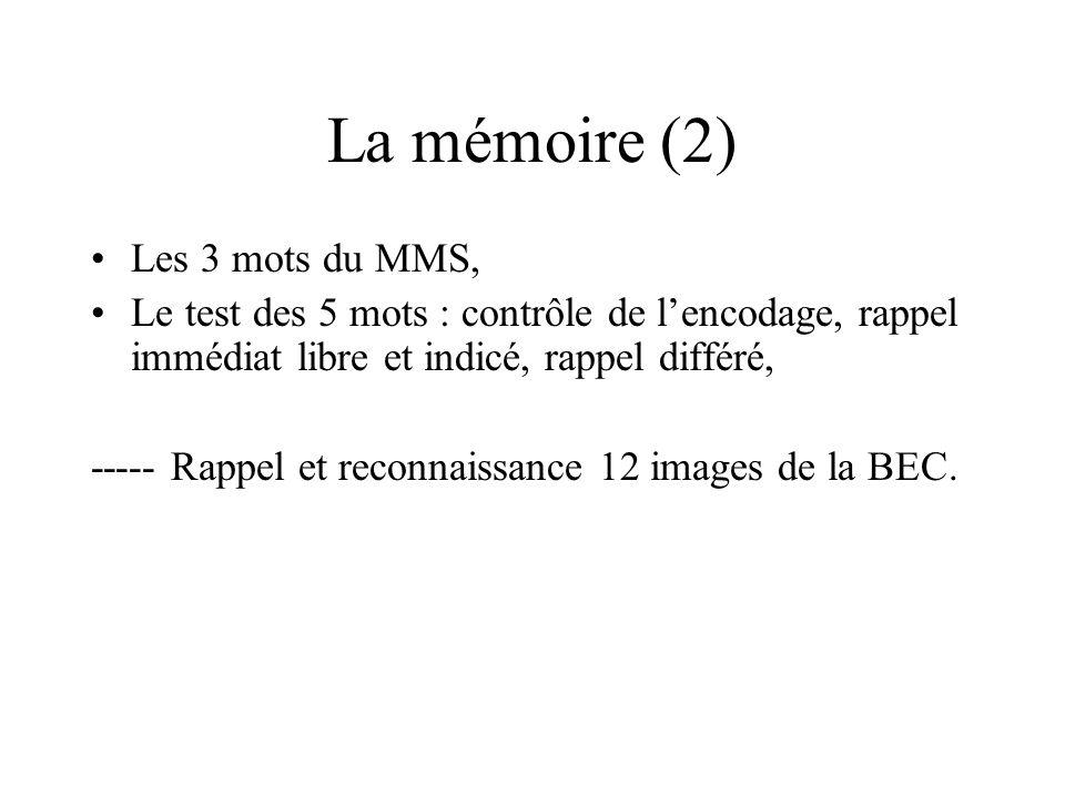 La mémoire (2) Les 3 mots du MMS,