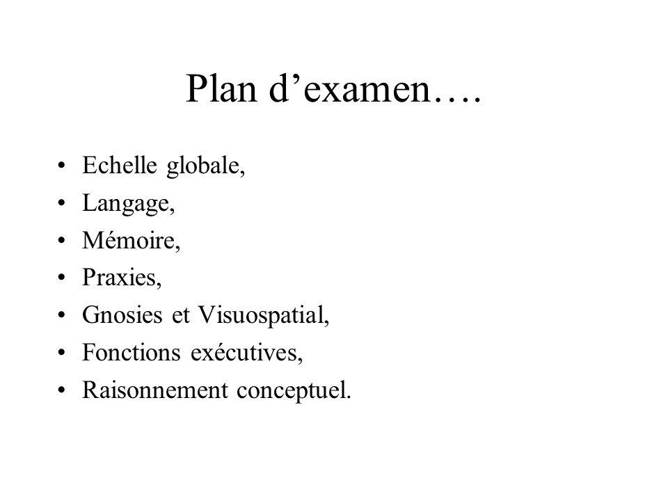 Plan d'examen…. Echelle globale, Langage, Mémoire, Praxies,