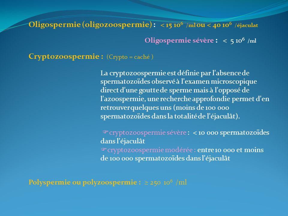 Cryptozoospermie : (Crypto = caché )