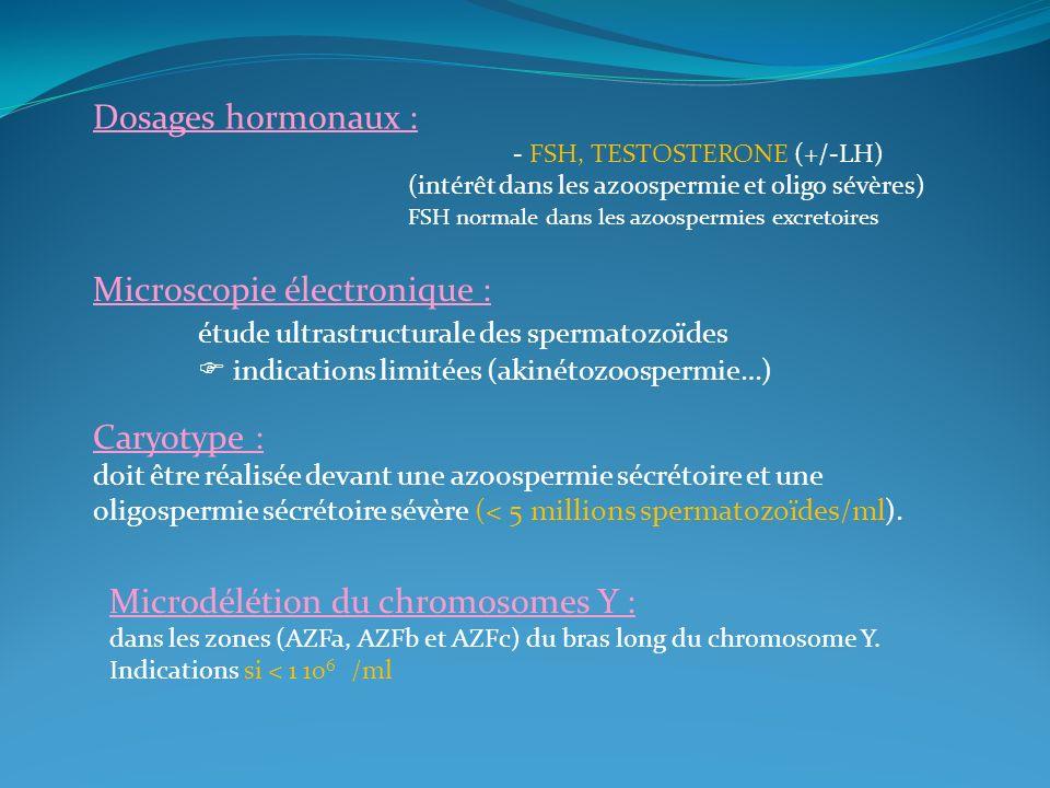 Microscopie électronique : étude ultrastructurale des spermatozoïdes