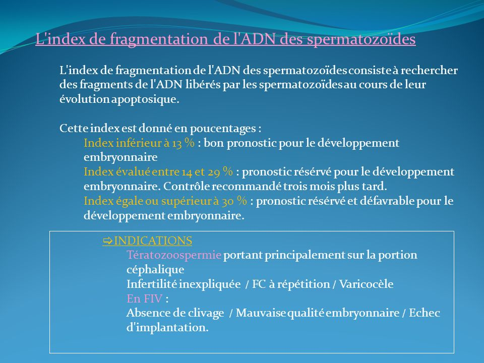 L index de fragmentation de l ADN des spermatozoïdes