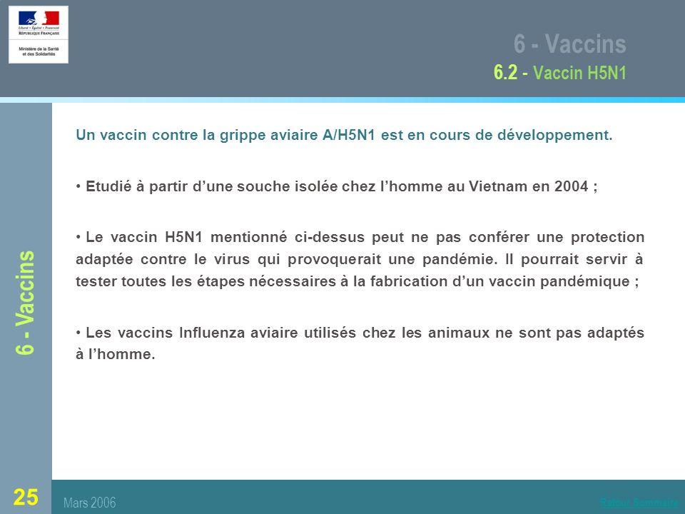 6 - Vaccins 6.2 - Vaccin H5N1 6 - Vaccins