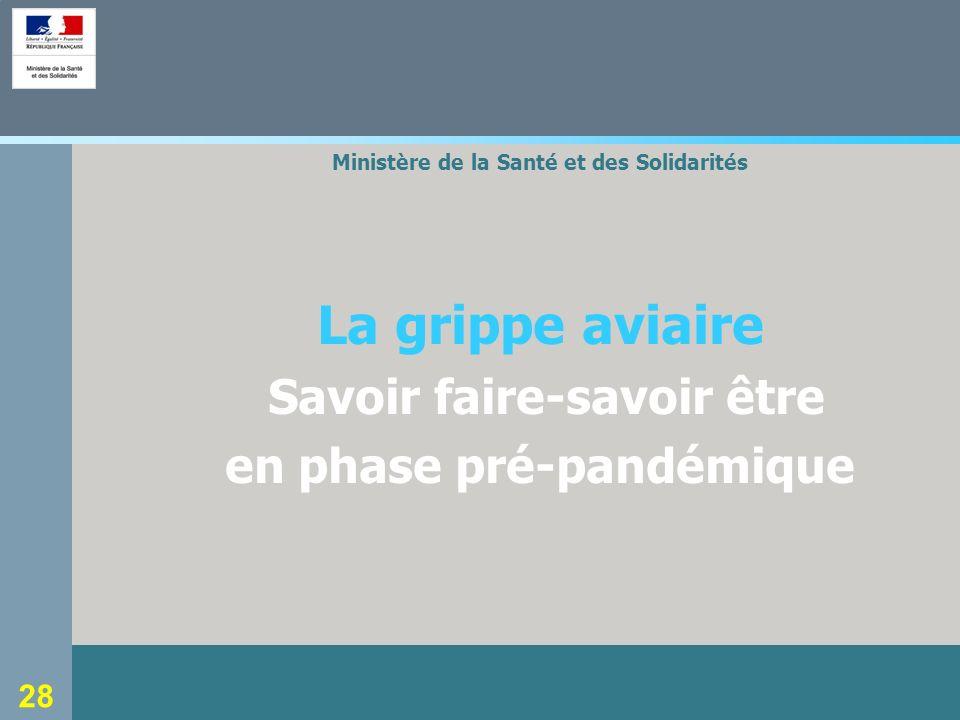 Ministère de la Santé et des Solidarités en phase pré-pandémique