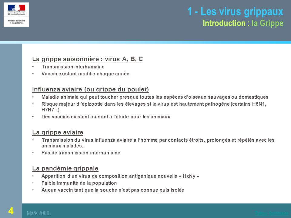 1 - Les virus grippaux Introduction : la Grippe