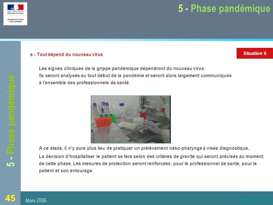 5 - Phase pandémique 5 - Phase pandémique Mars 2006 Situation 6