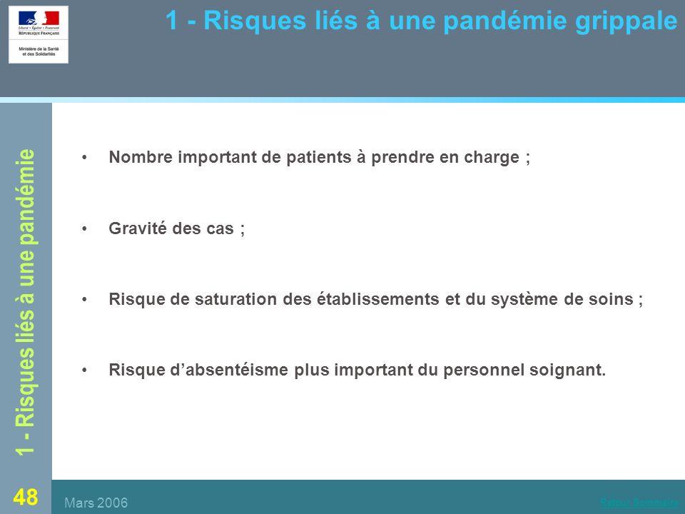 1 - Risques liés à une pandémie grippale