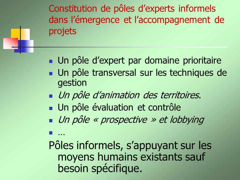 Constitution de pôles d'experts informels dans l'émergence et l'accompagnement de projets