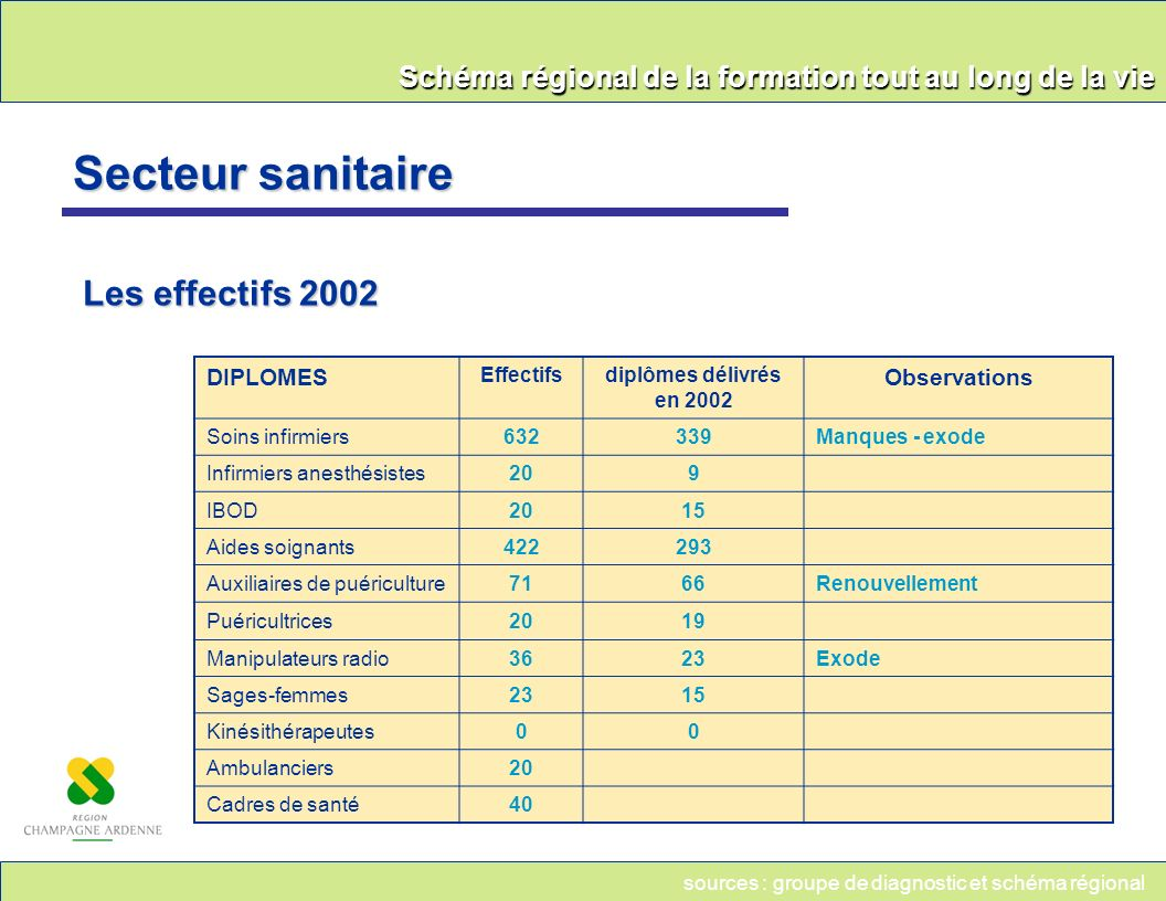 Secteur sanitaire Les effectifs 2002 DIPLOMES Observations Effectifs