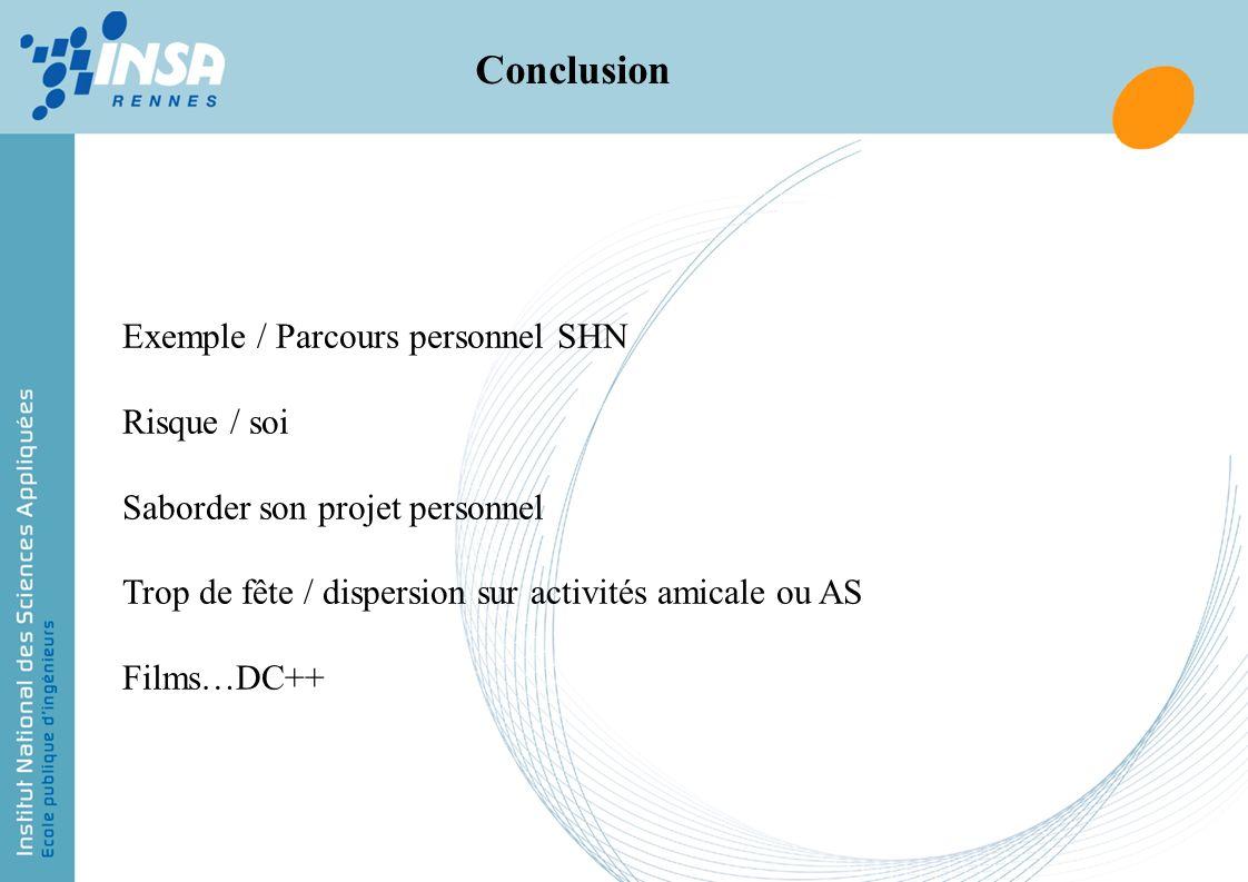 Conclusion Exemple / Parcours personnel SHN Risque / soi