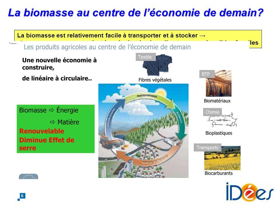 La biomasse au centre de l'économie de demain