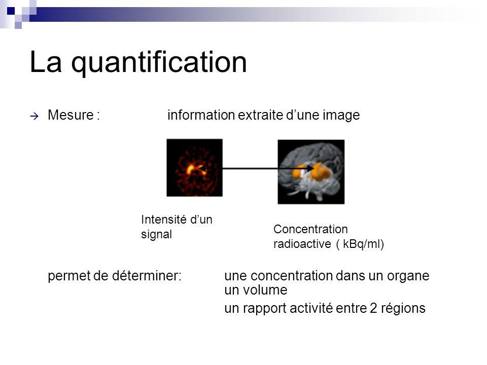 La quantification Mesure : information extraite d'une image