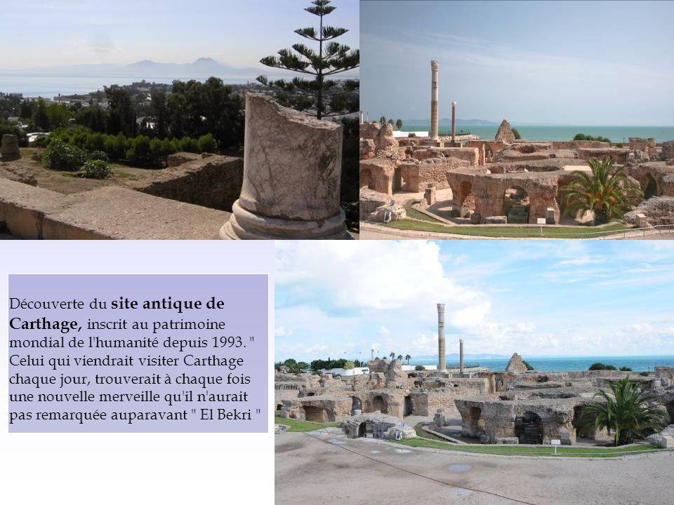Découverte du site antique de Carthage, inscrit au patrimoine mondial de l humanité depuis 1993.