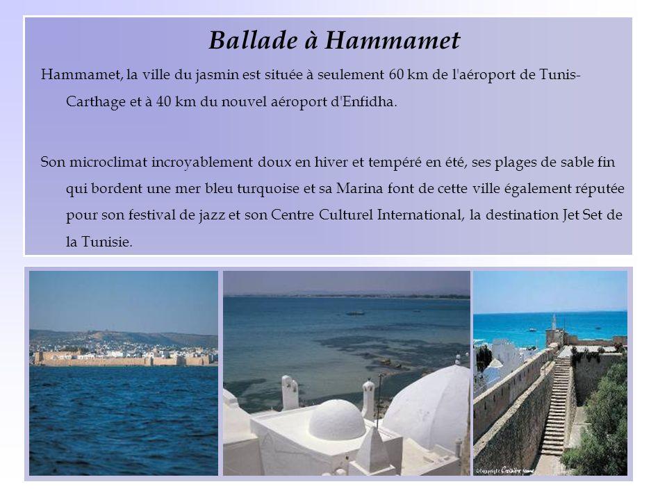 Ballade à Hammamet Hammamet, la ville du jasmin est située à seulement 60 km de l aéroport de Tunis-Carthage et à 40 km du nouvel aéroport d Enfidha.