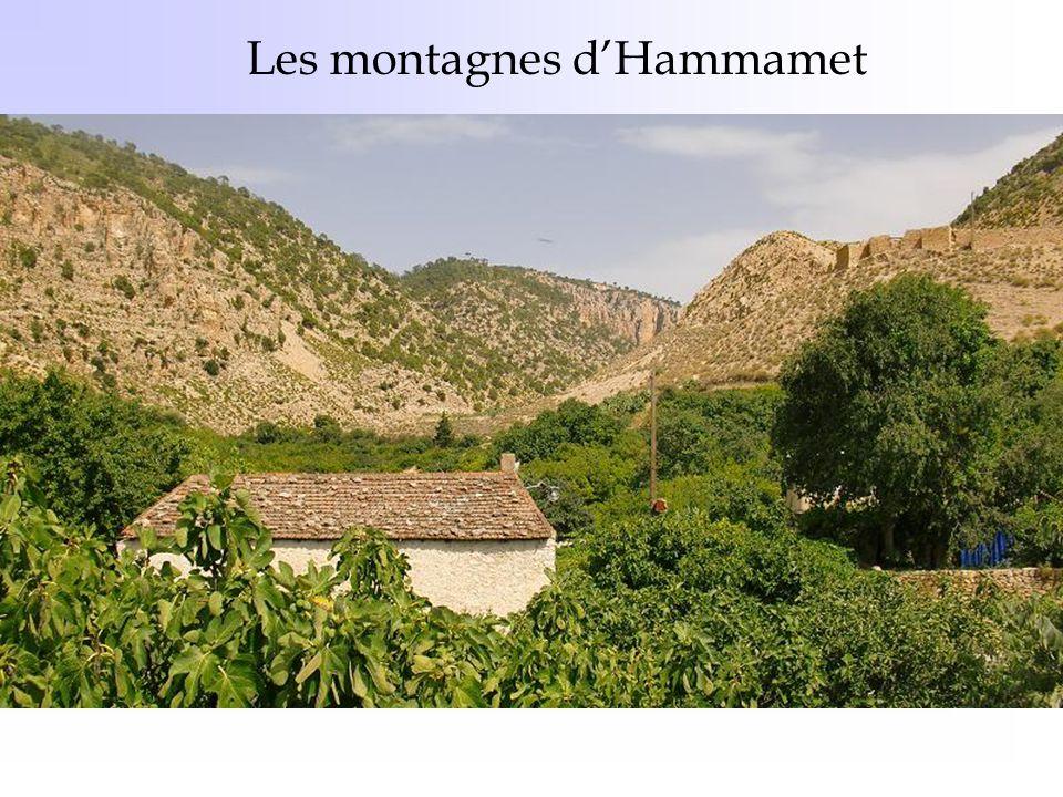 Les montagnes d'Hammamet