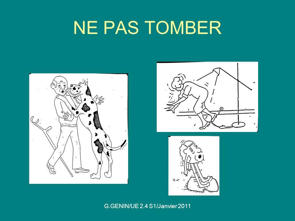 NE PAS TOMBER G.GENIN/UE 2.4 S1/Janvier 2011