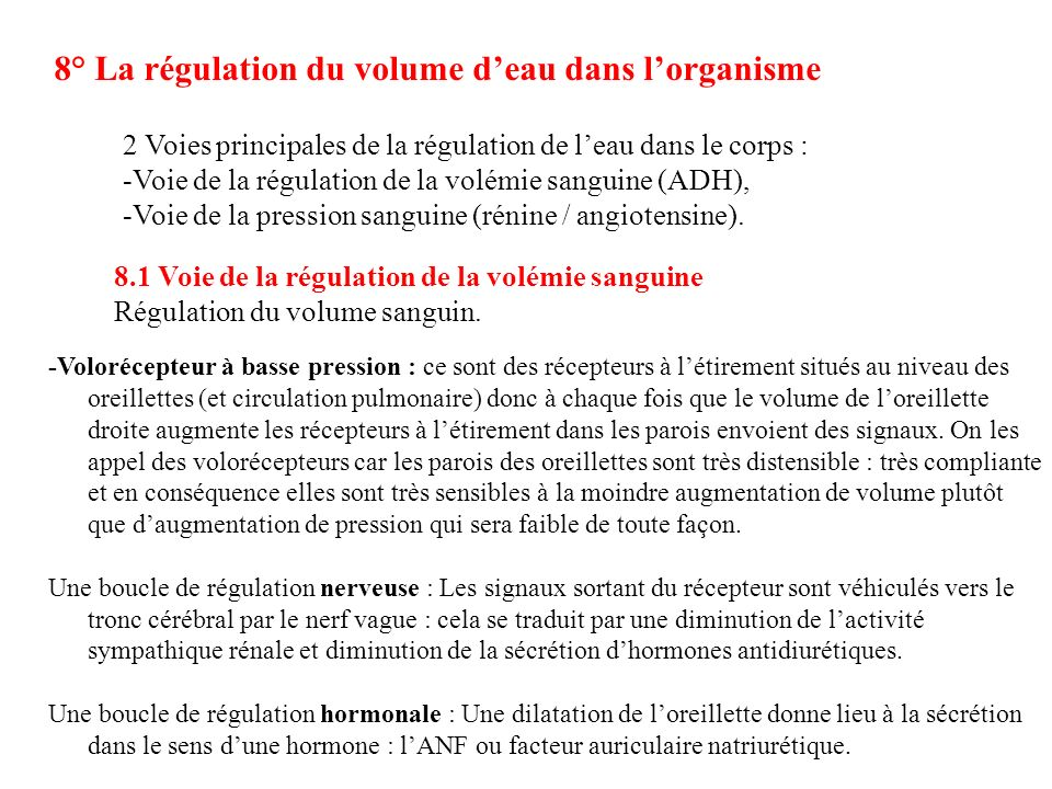 8° La régulation du volume d'eau dans l'organisme