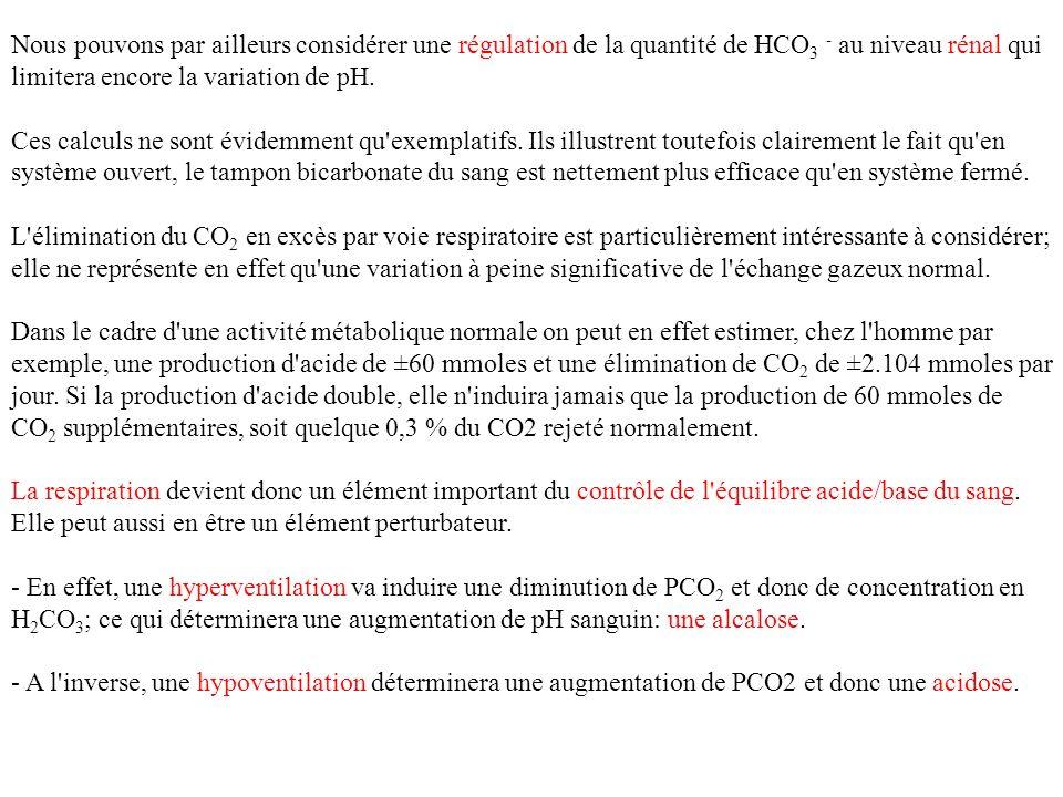 Nous pouvons par ailleurs considérer une régulation de la quantité de HCO3 - au niveau rénal qui limitera encore la variation de pH.