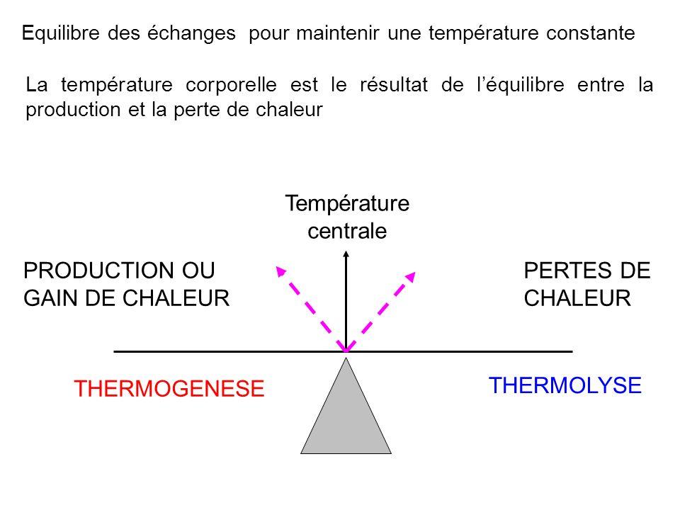 Equilibre des échanges pour maintenir une température constante