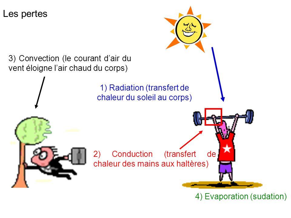 1) Radiation (transfert de chaleur du soleil au corps)