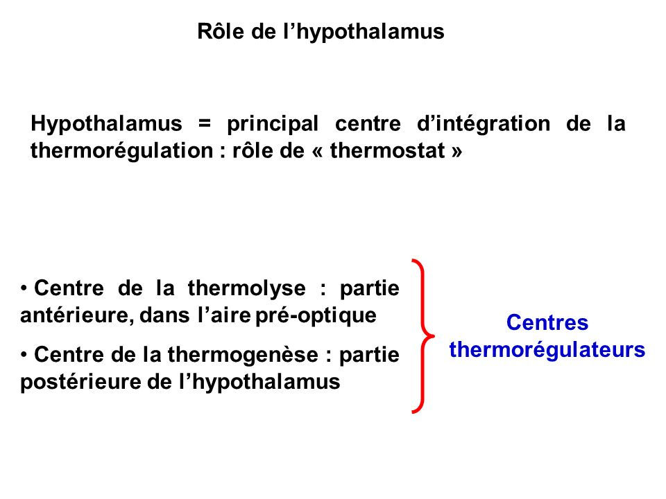 Rôle de l'hypothalamus Centres thermorégulateurs