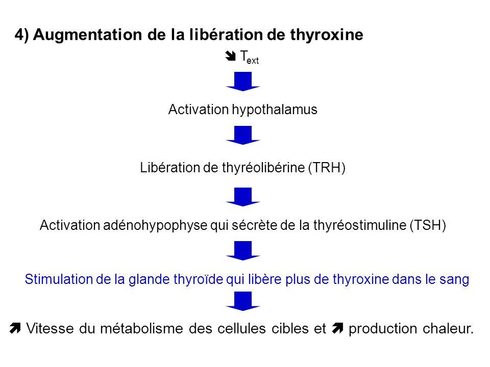 4) Augmentation de la libération de thyroxine