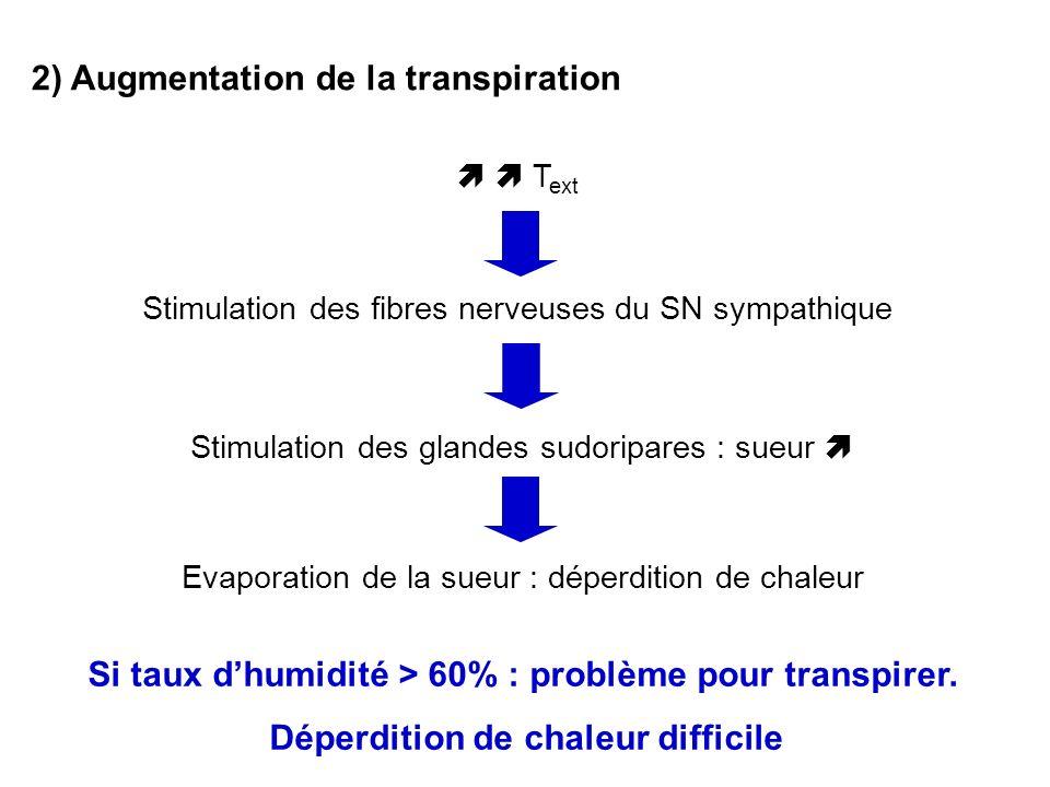 2) Augmentation de la transpiration