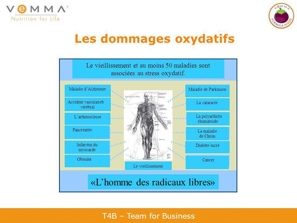 Les dommages oxydatifs