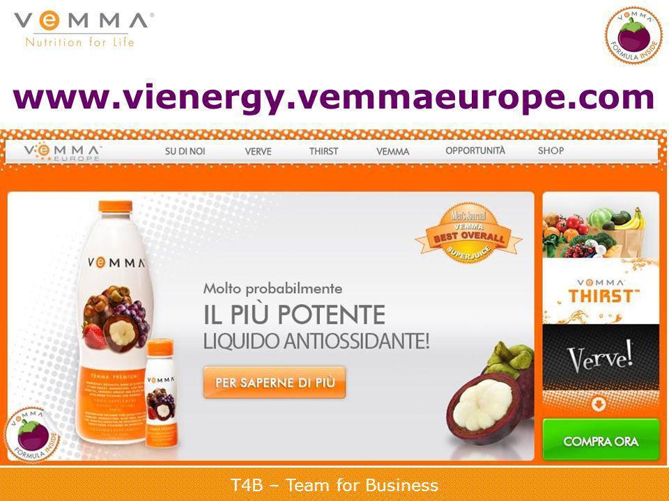 www.vienergy.vemmaeurope.com