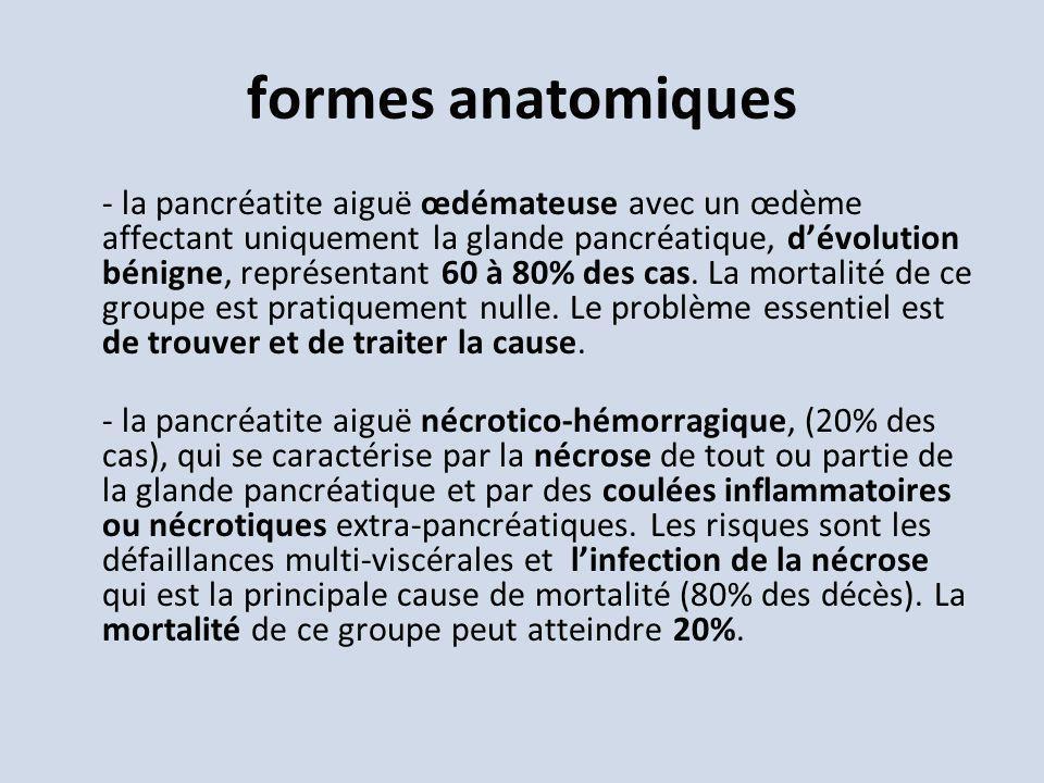 formes anatomiques