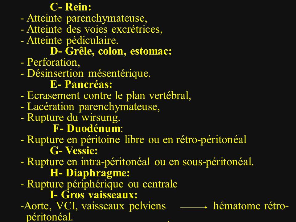 C- Rein: - Atteinte parenchymateuse, - Atteinte des voies excrétrices, - Atteinte pédiculaire. D- Grêle, colon, estomac:
