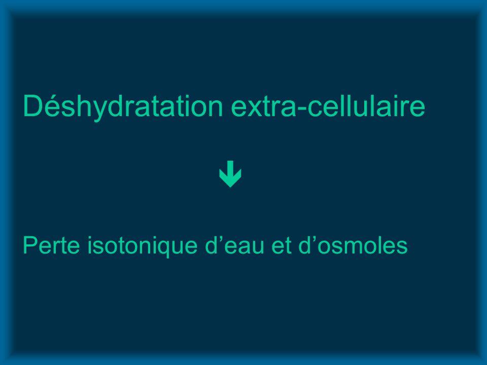 Déshydratation extra-cellulaire  Perte isotonique d'eau et d'osmoles