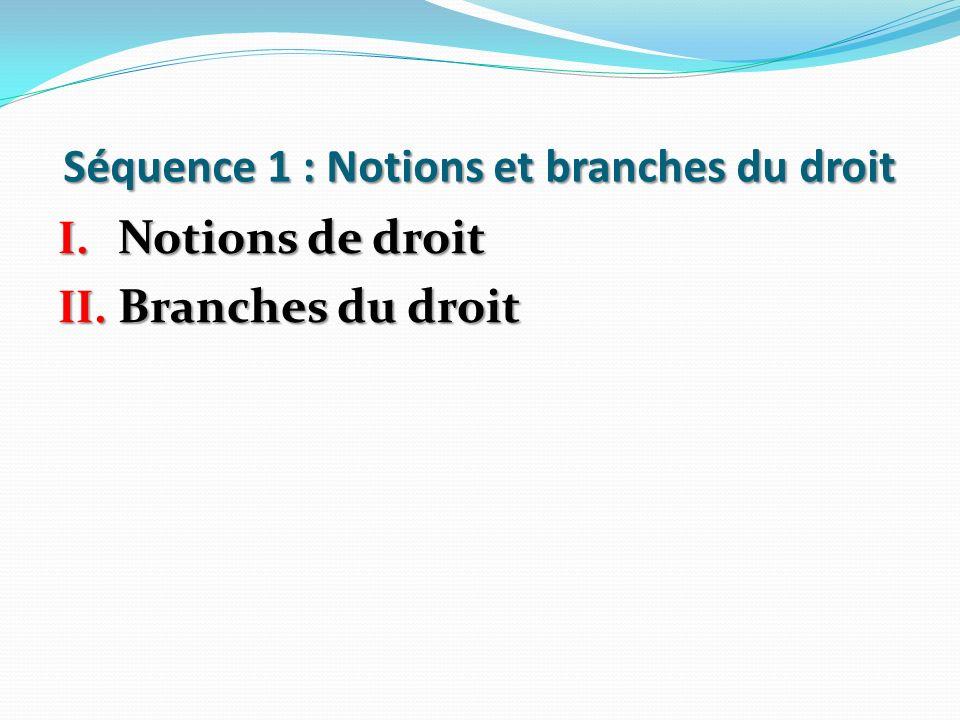Séquence 1 : Notions et branches du droit