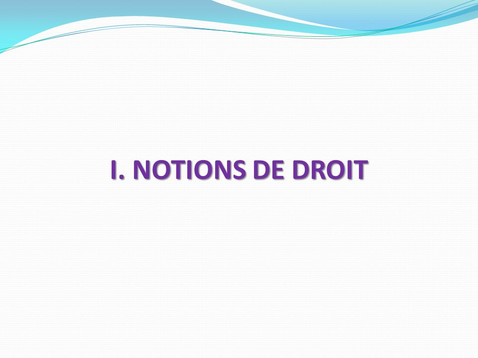 I. NOTIONS DE DROIT
