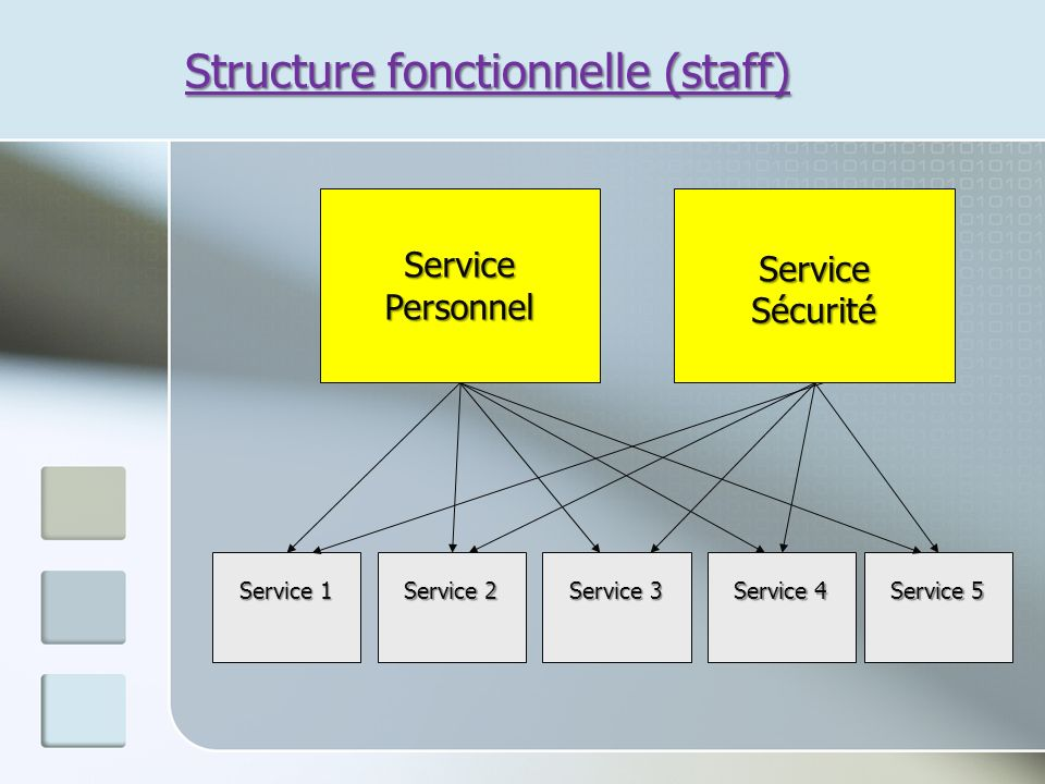 Structure fonctionnelle (staff)