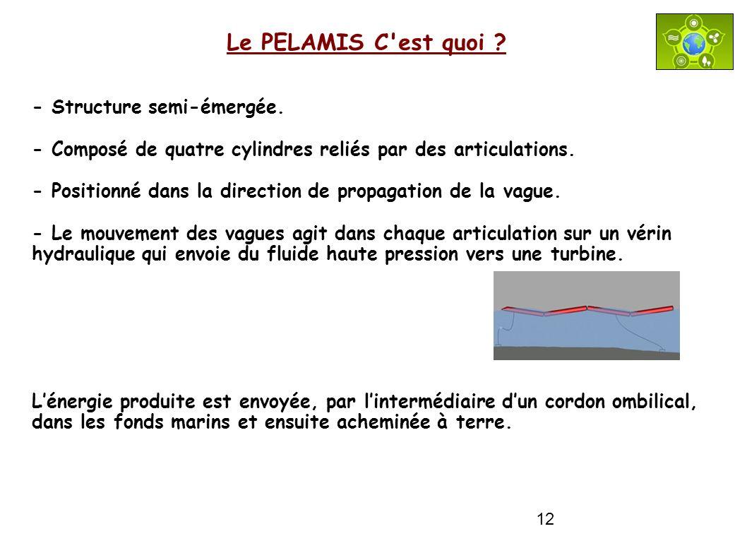 Le PELAMIS C est quoi - Structure semi-émergée.