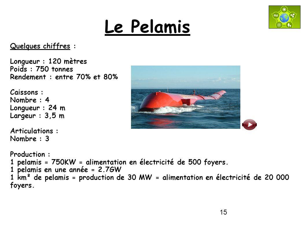 Le Pelamis Quelques chiffres : Longueur : 120 mètres