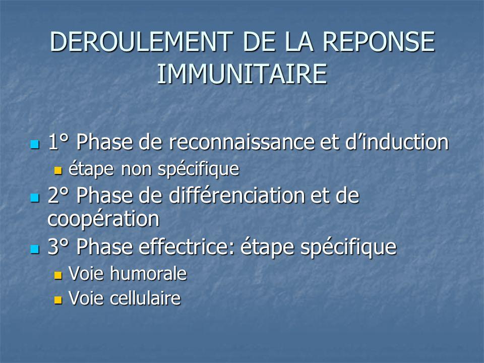DEROULEMENT DE LA REPONSE IMMUNITAIRE