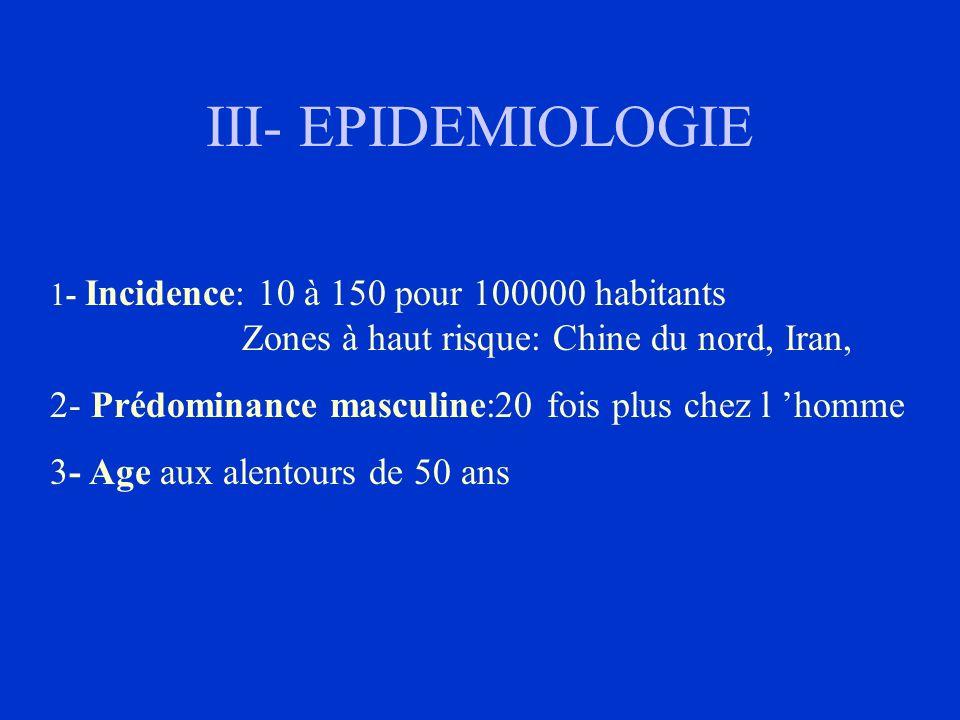 III- EPIDEMIOLOGIE - Prédominance masculine:20 fois plus chez l 'homme