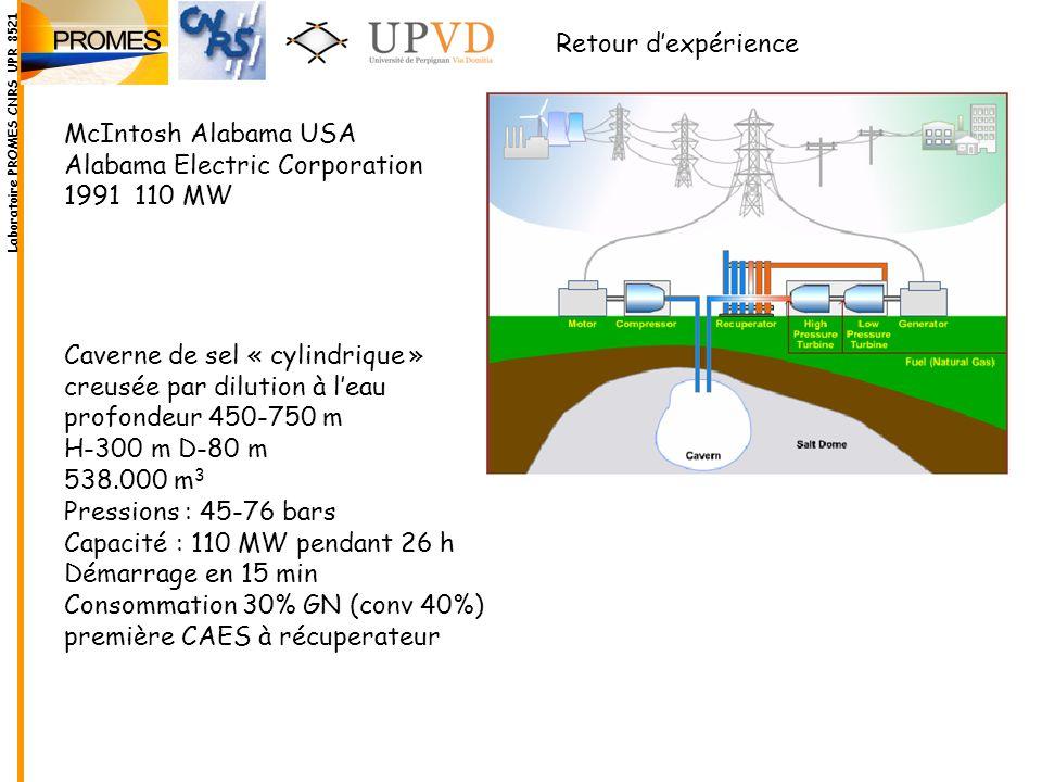 Alabama Electric Corporation 1991 110 MW